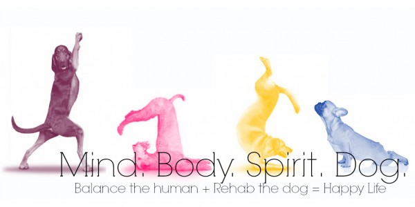 Mind. Body. Spirit. Dog.