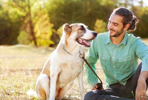 How to Live a Happy Life with Your Dog