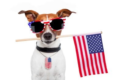 July 4th: Doggy Dos and Don'ts!